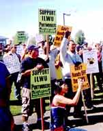 All Media Workers Should Join the WGA on Strike!